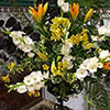 East-Witton-Harvest-Flowers2